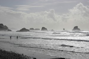 Walking the Oregon Coast